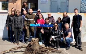 Проект «Нетландия»: расчистка территории